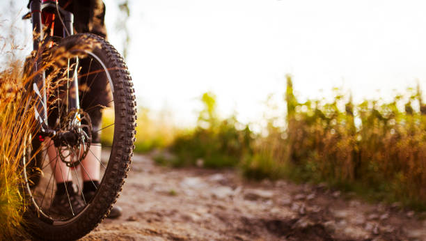 close-up of mtb bike wheel on dirt road - mountain biking stock photos and pictures