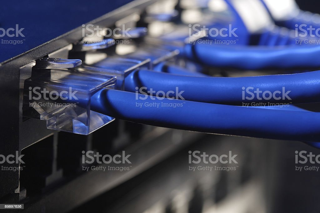 A closeup of multiple network cables plugged into a hub royalty-free stock photo