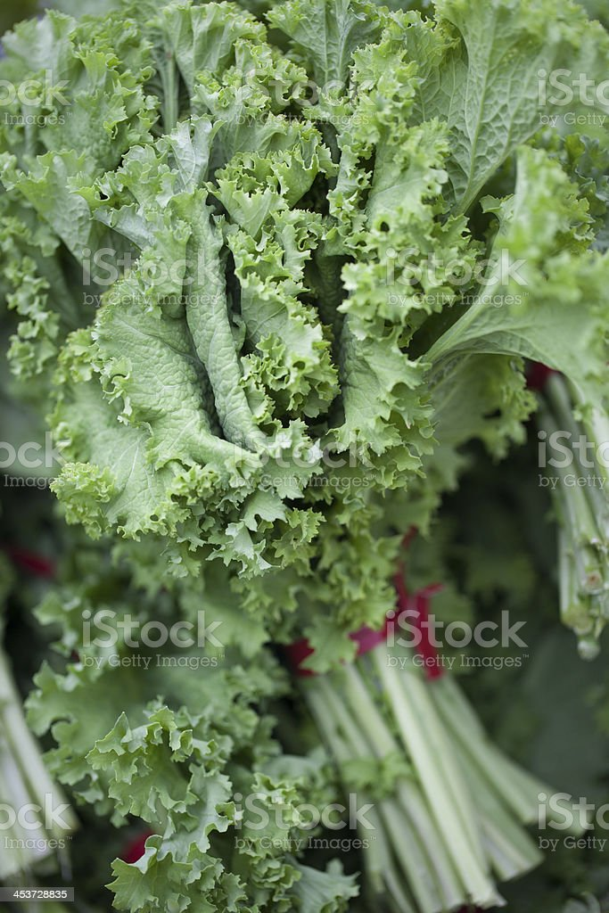 Close-up of mustard green leaves stock photo