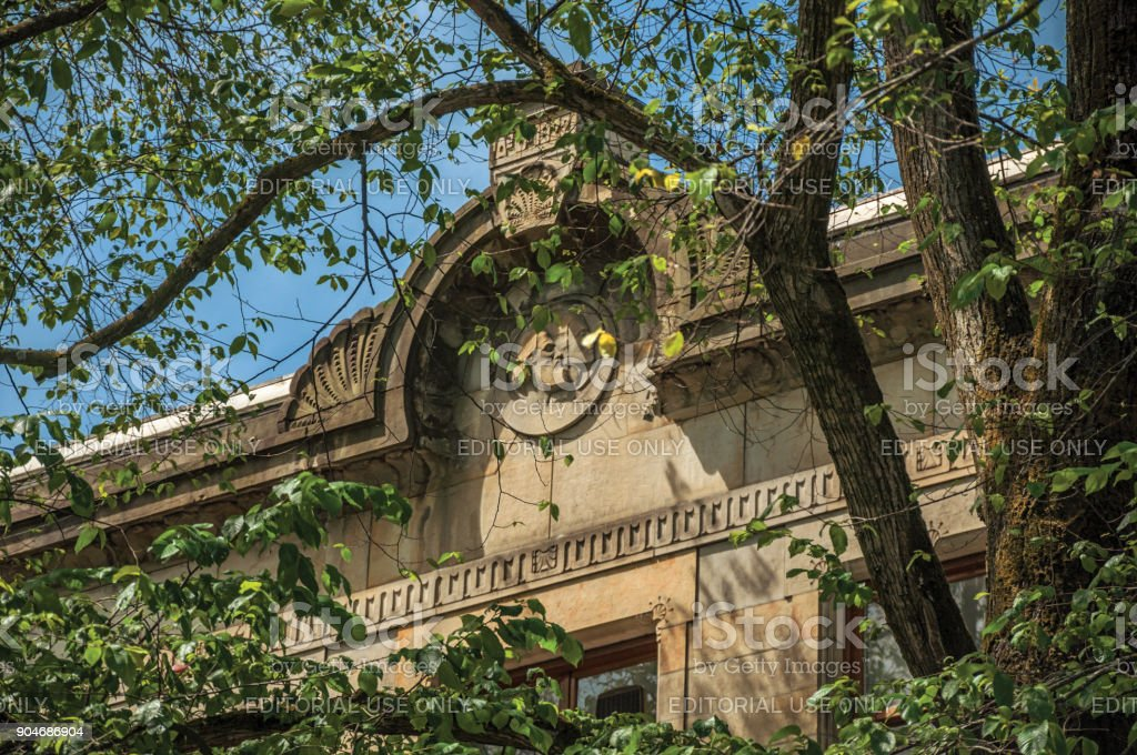 Close-up of old building facade decoration, with tree branches and sunny blue sky in Amsterdam. stock photo