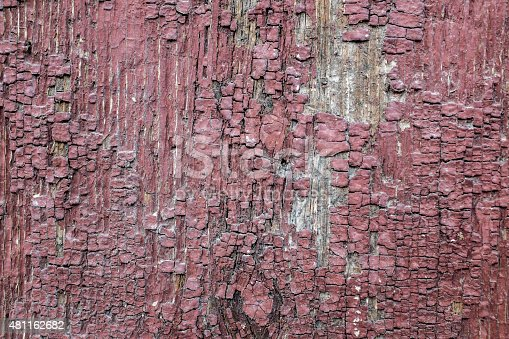 istock Closeup of old stained wood bark 481162682