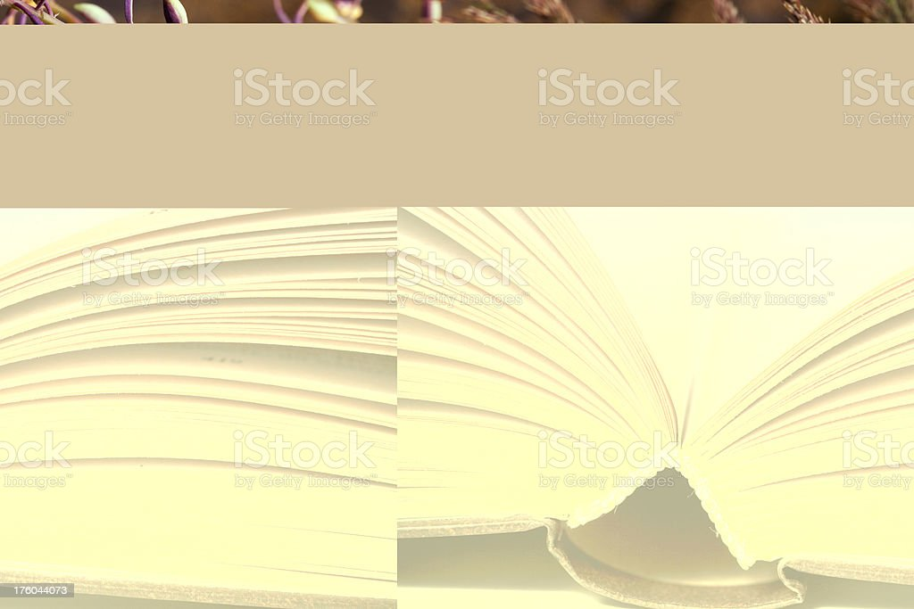 Close-up of opened book royalty-free stock photo