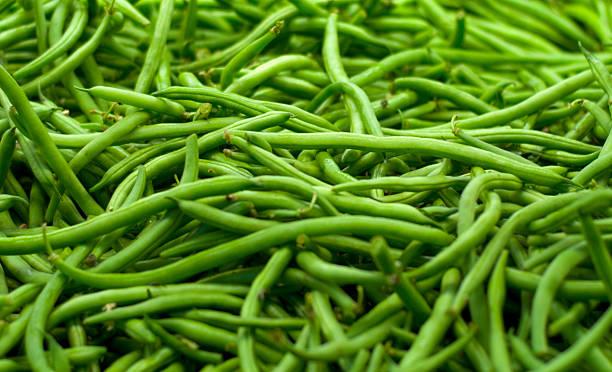 그린 프로그램 빈 야채 전체 프레임 유기농 음식 배경 - 그린빈 뉴스 사진 이미지