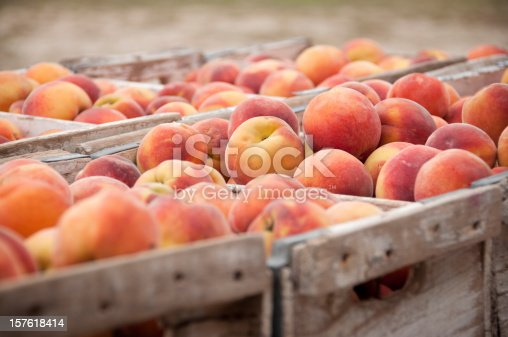 istock Close-Up of Peach Crates 157618414