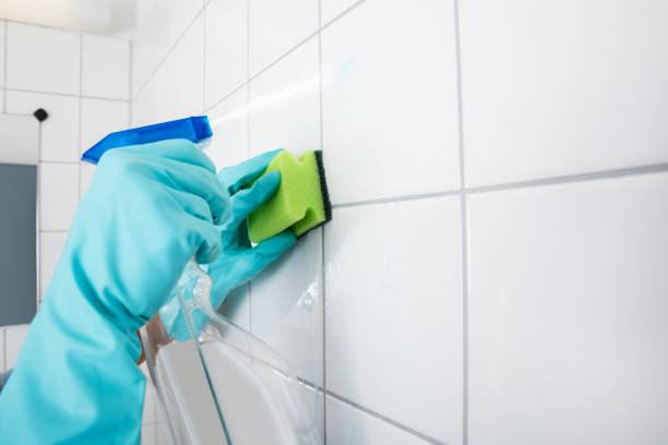 Close-up Of Person Cleaning The Tiled Wall stock photo