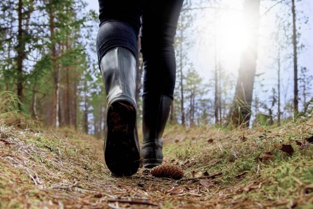 närbild av person vandra i skogen - pine forest sweden bildbanksfoton och bilder