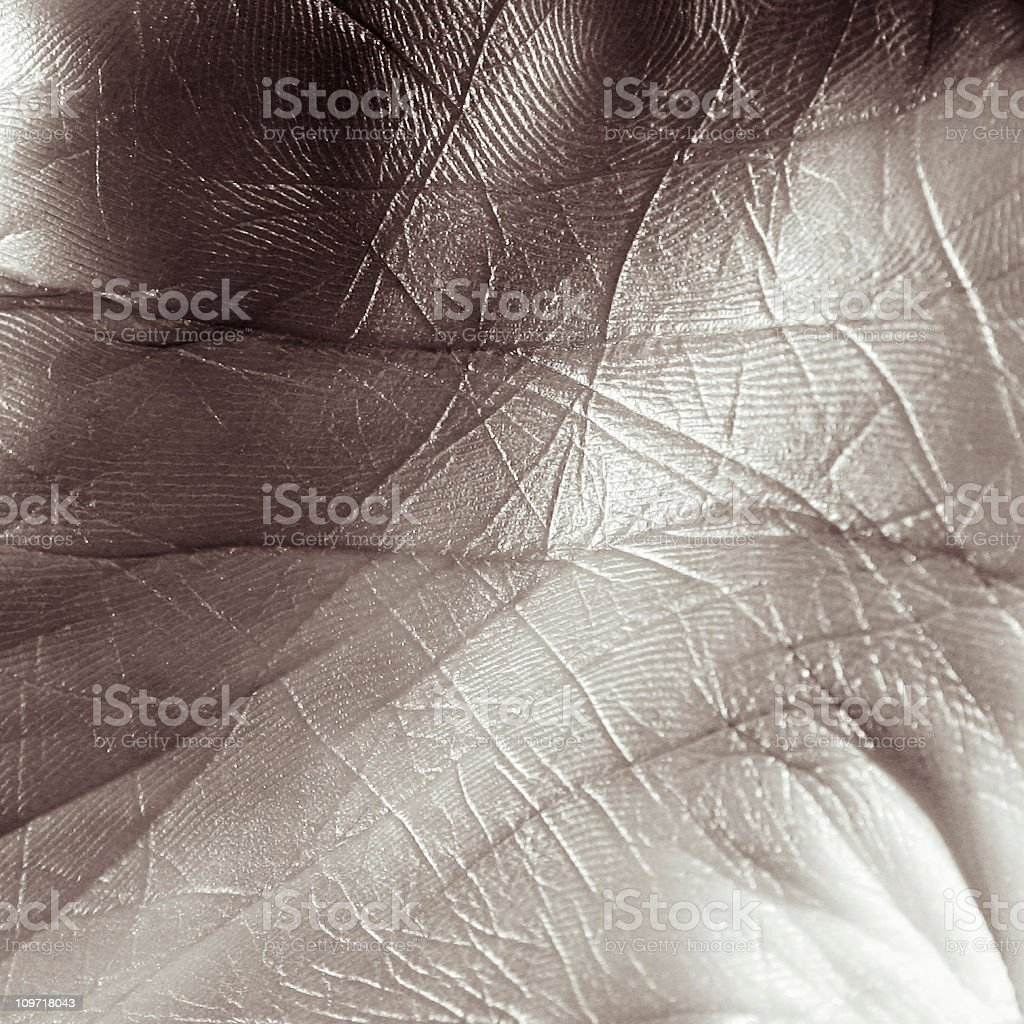 Close-up of Person's Palm, Toned royalty-free stock photo