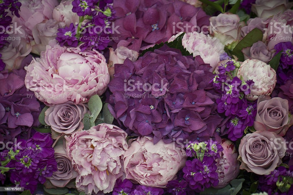 Blumen Hintergrund – Foto
