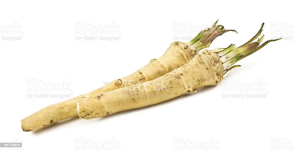 Close-up of plant roots over a white background stock photo