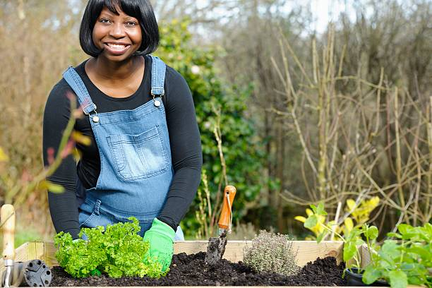 Royalty Free African Descent Spring Human Pregnancy Gardening ...