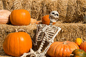 Close-up of Pumpkins and Skelton at Rural Pumpkin Patch
