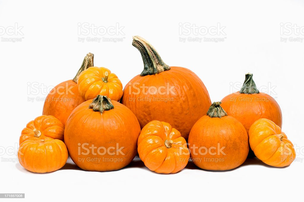 Close-up of pumpkins isolated on white background royalty-free stock photo