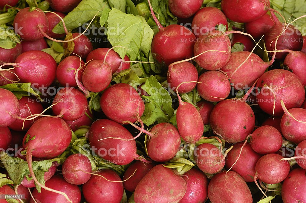 Close-up of Radishes on Display in a Produce Market royalty-free stock photo