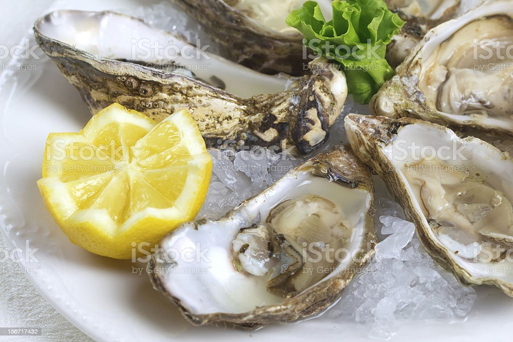 Close-up of raw oysters and lemon wedge served on plate stock photo