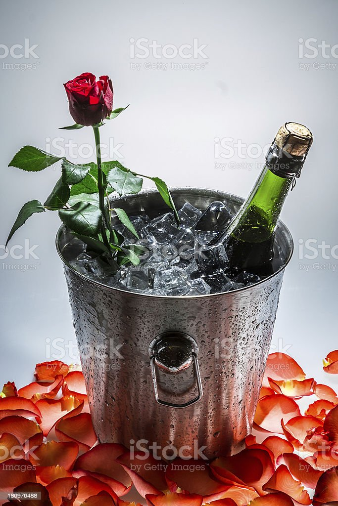 Closeup of red rose and cold champagne royalty-free stock photo