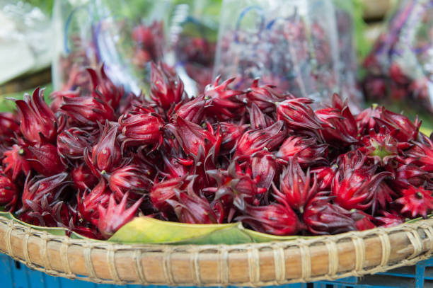Closeup of red roselle in market stock photo