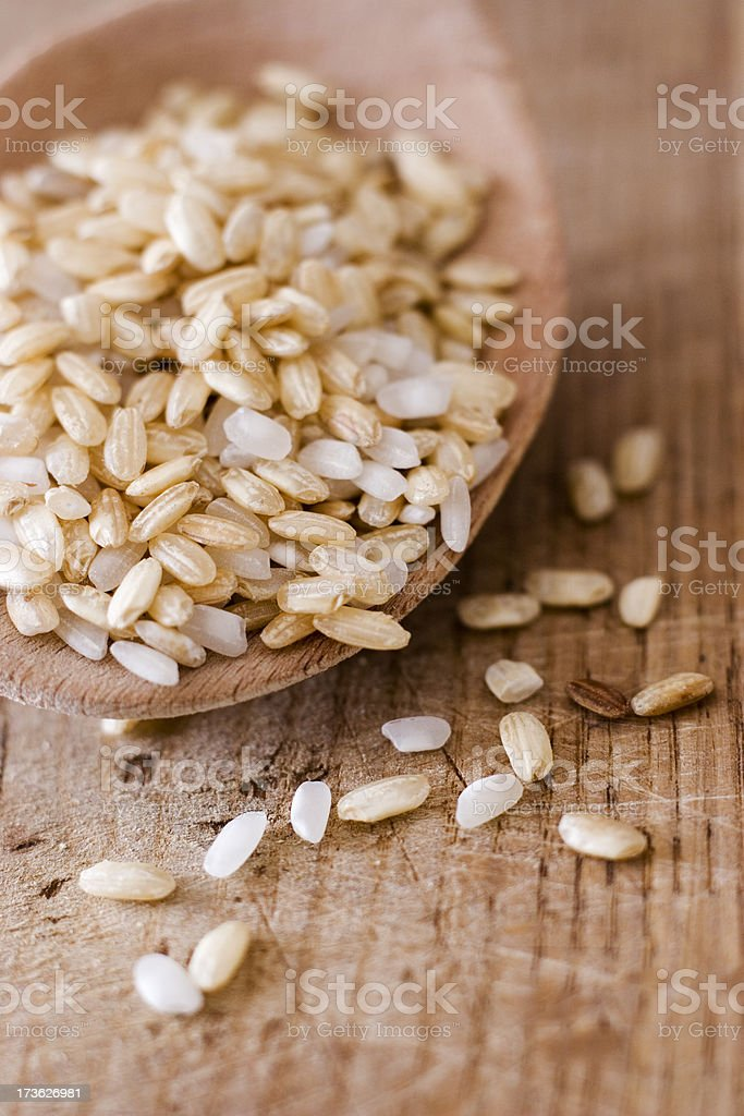 close-up of rice royalty-free stock photo