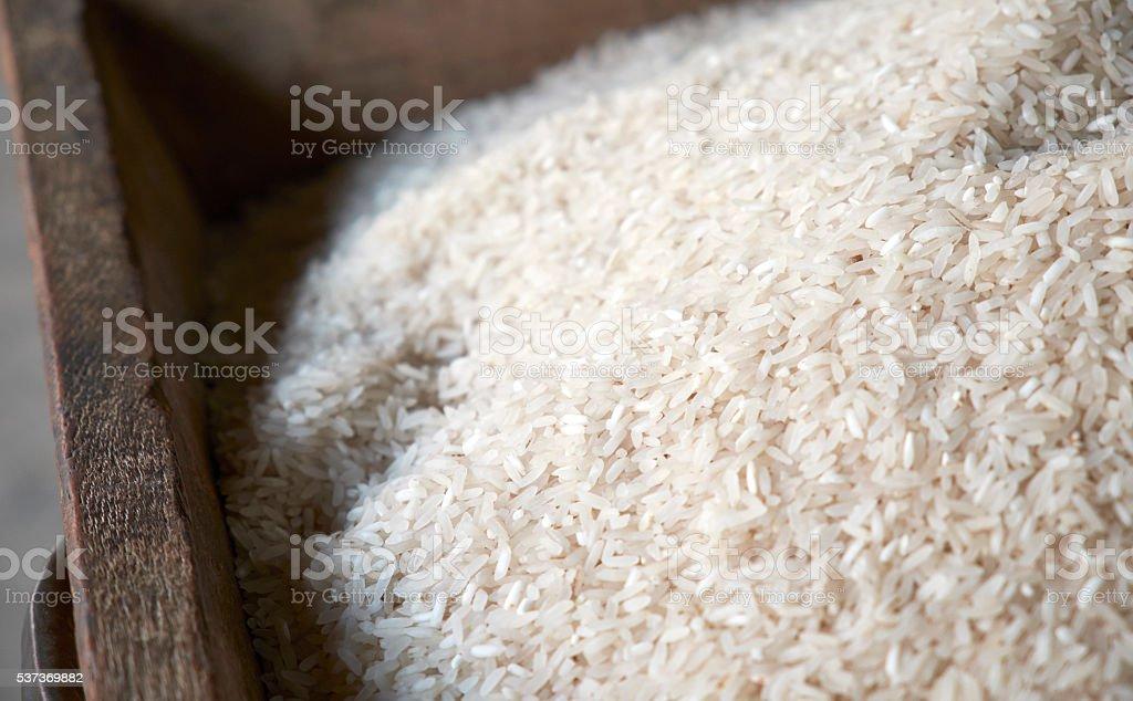 Close-up of Rice stock photo