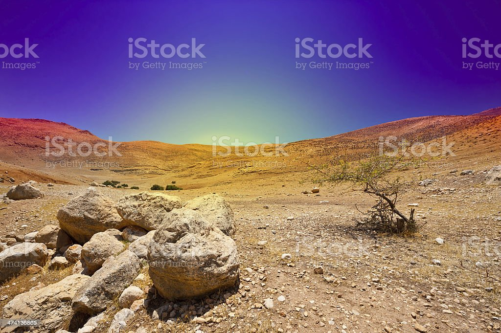 Close-up of rocks in the desert at sunrise stock photo