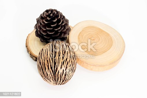 istock Closeup of round teak wood , Pine cone and dry Cerbera oddloam's seed on white background 1021121822