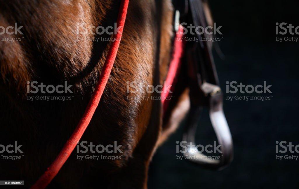 Close-up of Saddle on Horse stock photo