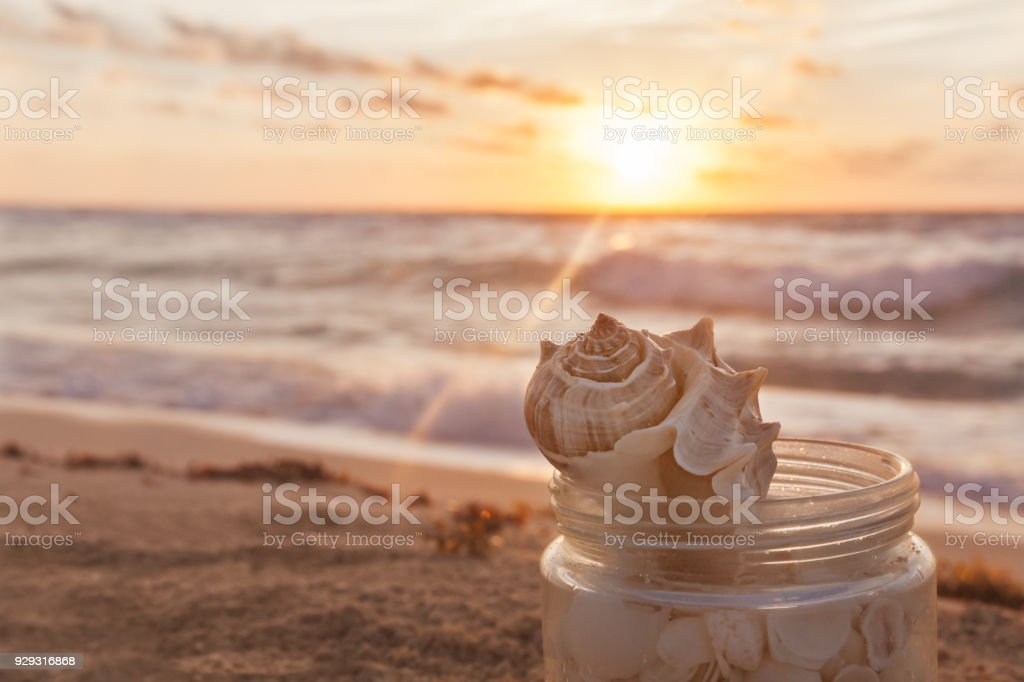 Closeup Of Sea Shells Collected In A Grass Jar On Tropical Sandy Beach stock photo