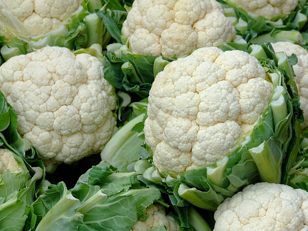Close-up of several heads of cauliflower stock photo