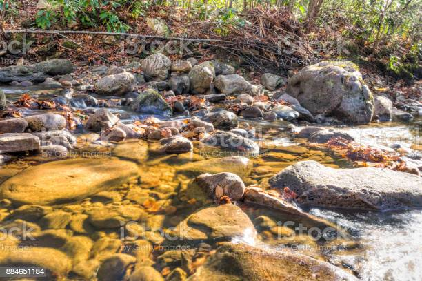 Photo of Closeup of shallow rock stream with running water in autumn with red orange leaf foliage on stones, shine