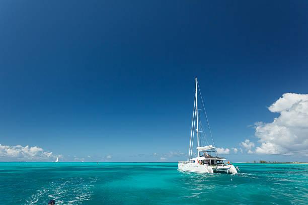 close-up of single catamaran with tall white mast - katamaran bildbanksfoton och bilder