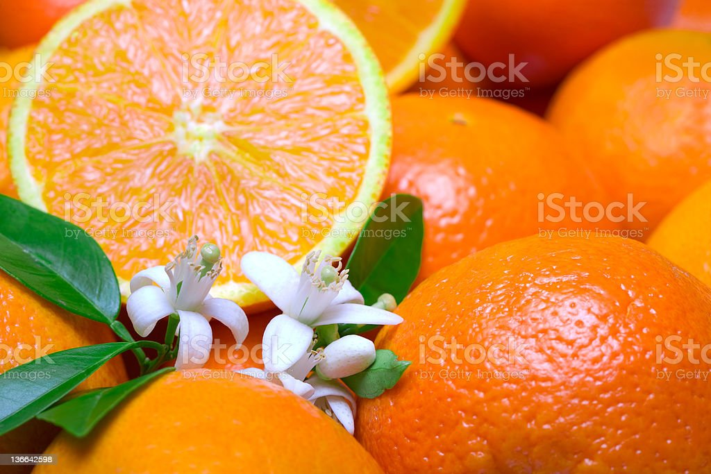 Close-up of sliced oranges and white flowers stock photo