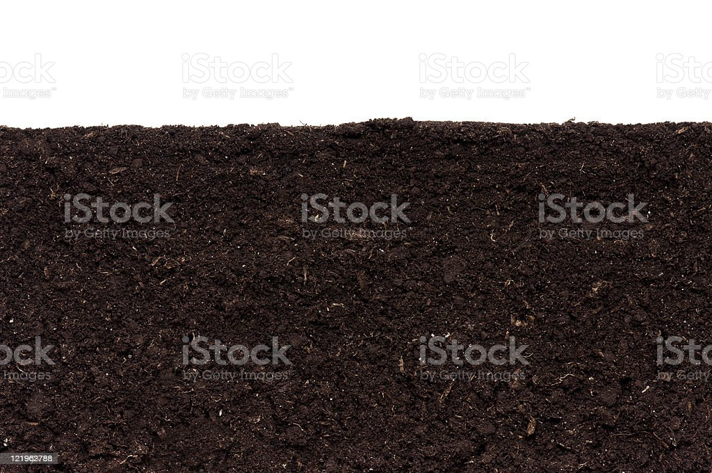 Close-up of soil against white background stock photo