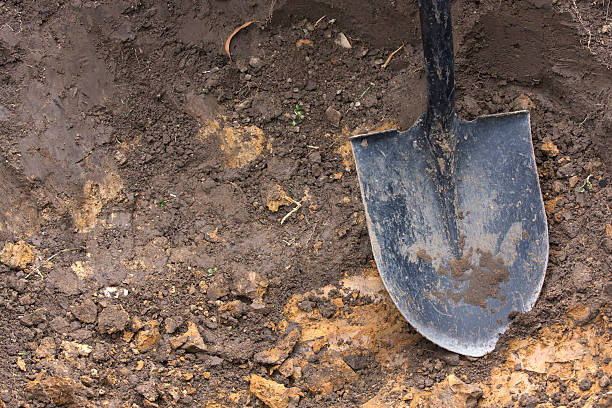 close-up of spade shovel being used to dig a hole in soil - graf stockfoto's en -beelden