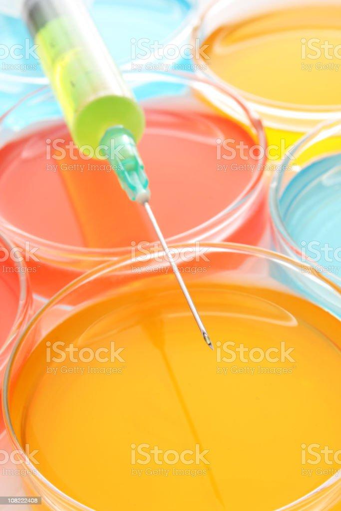 Close-up of Syringe and Petri Dishes royalty-free stock photo