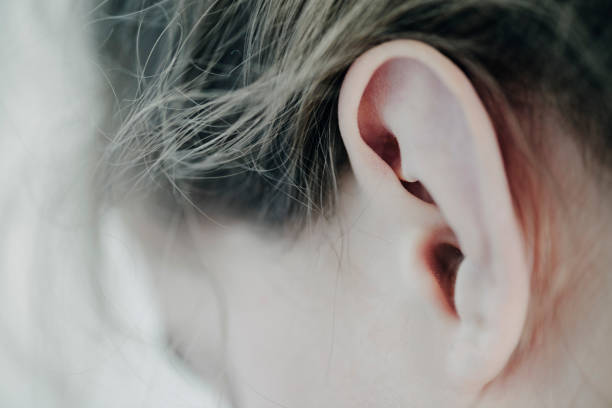Close-Up of The Ear of a Young Girl. Delicate close-up of a young girl's ear, photographed with a very shallow depth of field with the point of focus on middle of the ear. Horizontal format with some copy space. human ear stock pictures, royalty-free photos & images