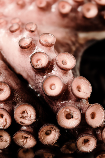 Close-up of the tentacles of a boiled octopus on a wooden surface. Concept natural food, seafood.