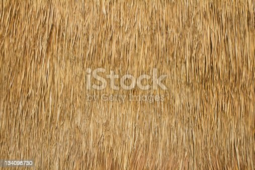 Wall of bulrush thatch-covered for a long time.