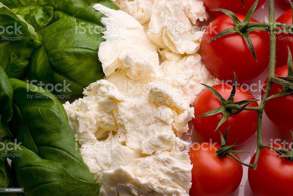 Tricolore - foto de stock