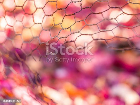 Closeup of torn or broken steel mesh with blurry colorful background in autumn season.