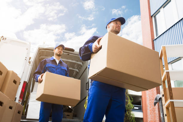close-up of two delivery men carrying cardboard box - house hunting stock photos and pictures