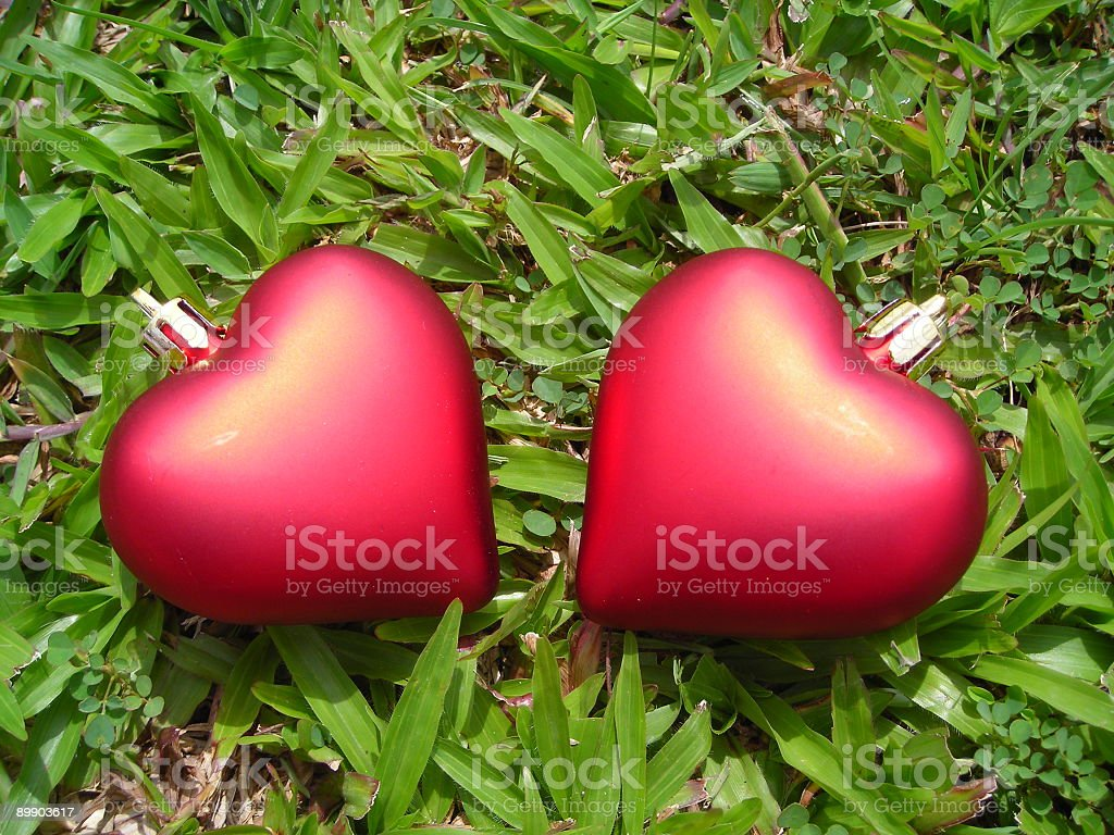 Closeup of two separated hearts royalty-free stock photo