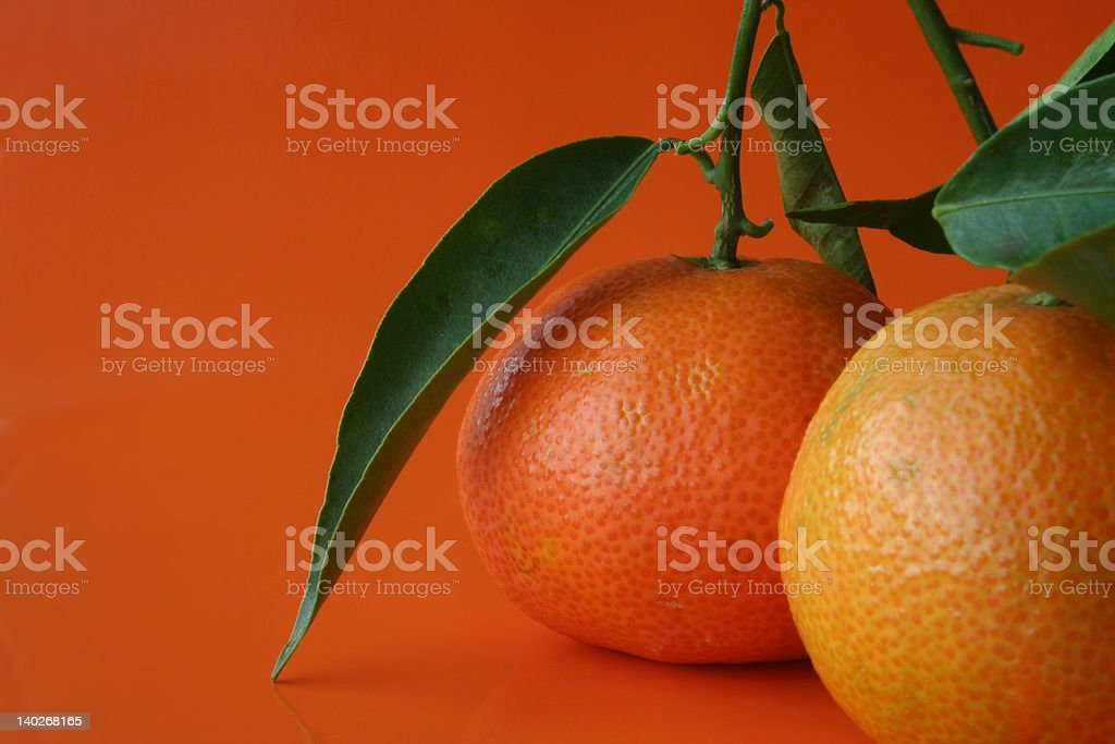 Closeup of two tangerines royalty-free stock photo