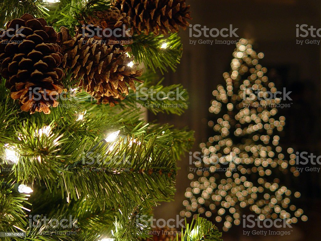 Close-up of white Christmas lights on holiday tree royalty-free stock photo