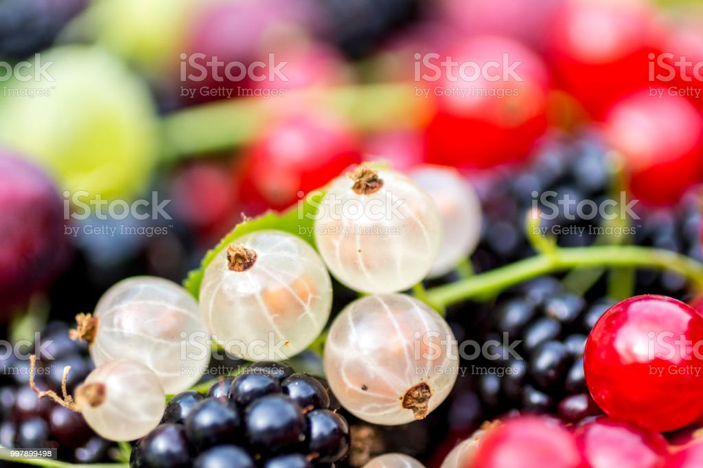 Close-up of white currants stock photo