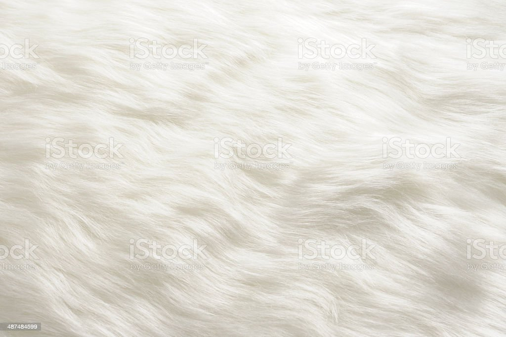 Close-up of white fur texture background stock photo