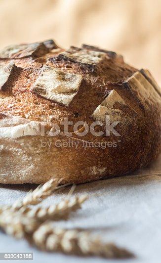 913749618 istock photo Close-up of Whole grain Sourdough Bread on a gray kitchen towel 833043188