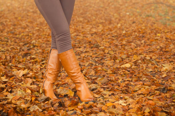 Closeup of woman legs in brown boots. Fall fashion stock photo