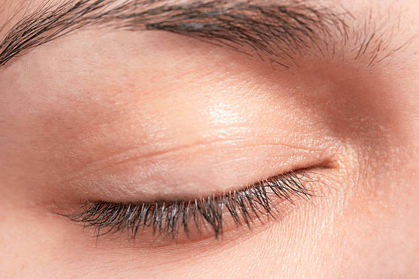 close-up of woman's eyelid including eyelashes and eyebrow - eyelid stock photos and pictures