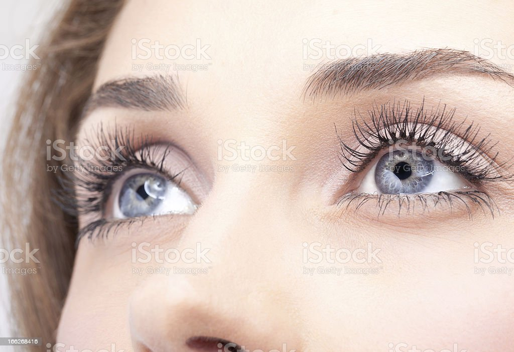 Close-up of woman's grey eyes with mascara stock photo