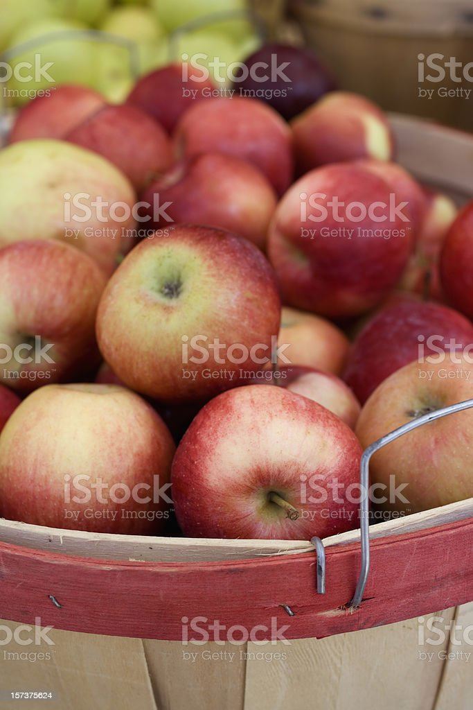 Close-up of wooden barrel of apples royalty-free stock photo