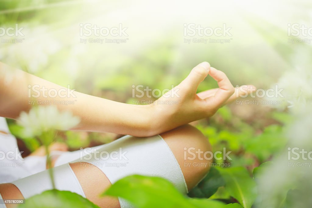 Close-up of Yoga chin mudra in the forest stock photo